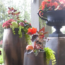 Using pots and containers in landscape design and gardens.