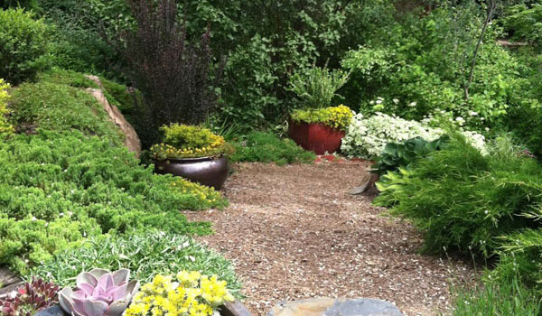 mulch-pathway