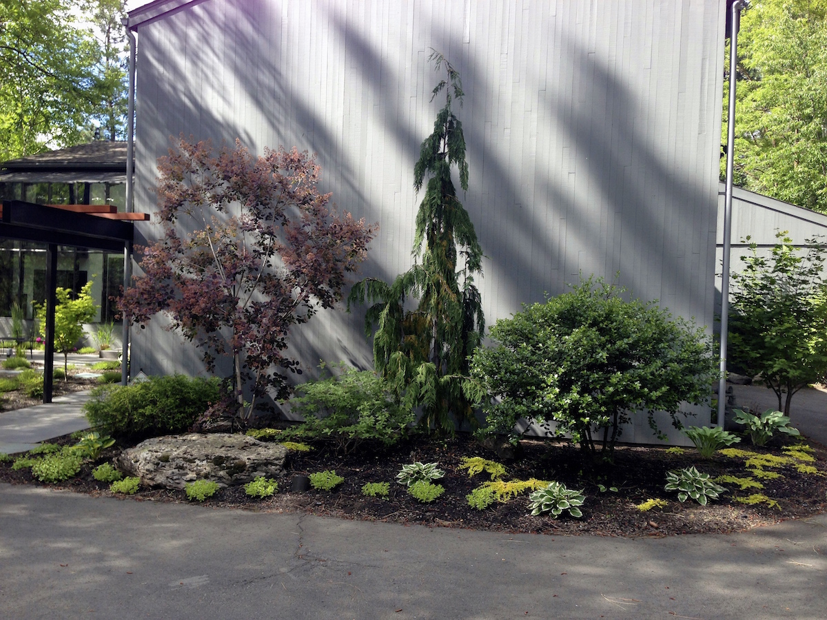 woodland-modern-entry